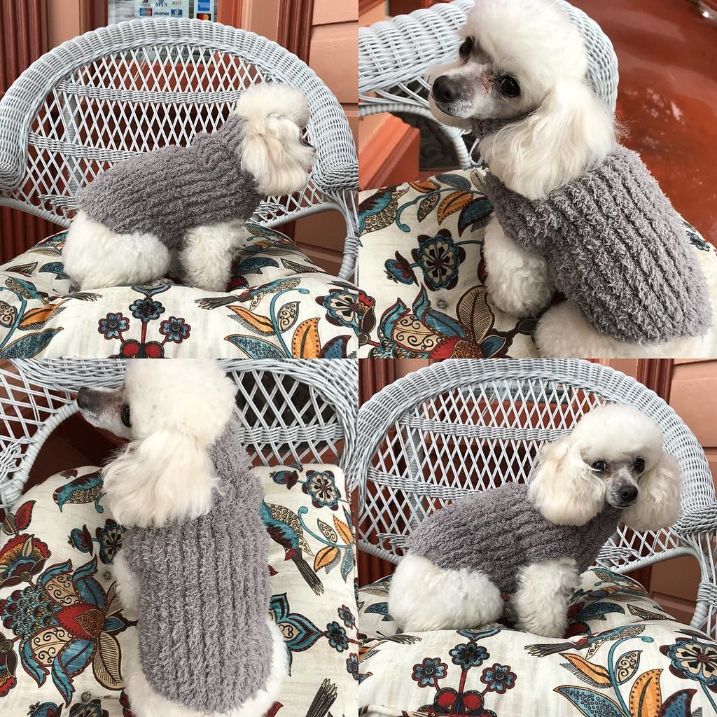 Barefoot Dreams Cozy Chic Ribbed Dog Sweater Warm Grey Flickr