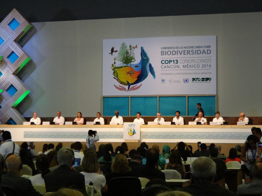 1 每兩年舉辦一次的締約方大會是生物多樣性公約的最高權力機構