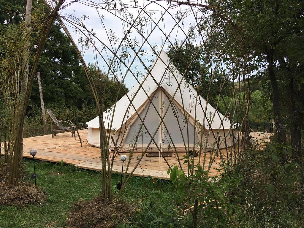 Bell tent in willow dome