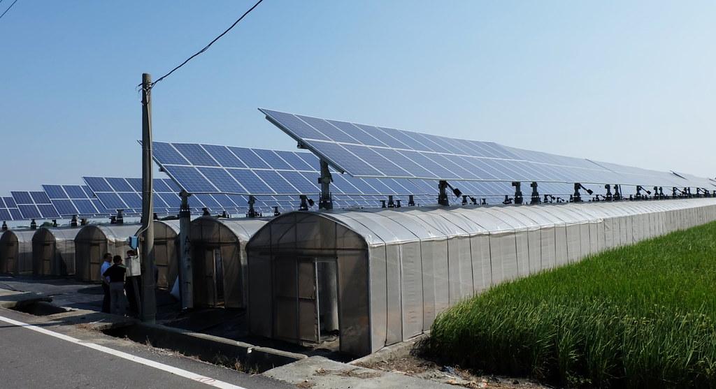 20171025雲林 追日光電溫室農作