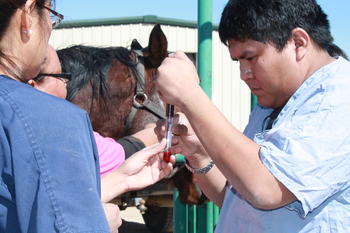 American Indian students at Navajo Technical College