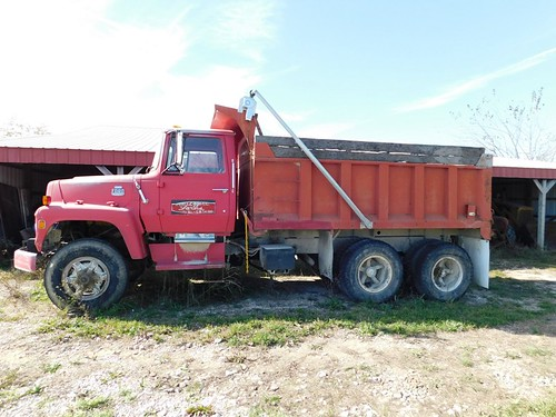 1981 Ford 8000 dump truck | by thornhill3