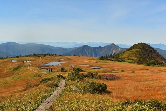 苗場山・小赤沢コースの湿原