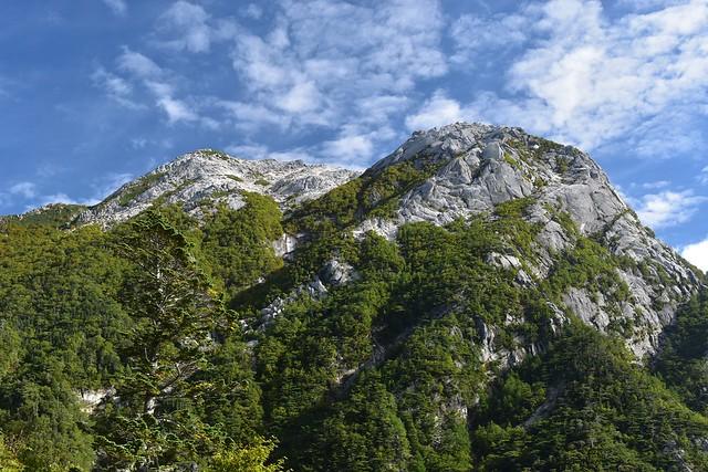 仙水峠から見上げる甲斐駒ヶ岳・摩利支天