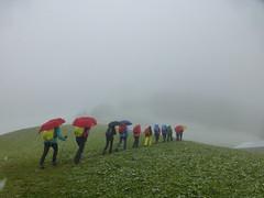 Über grüne Hügel in den Nebel