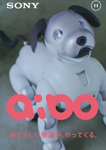 アイボ aibo