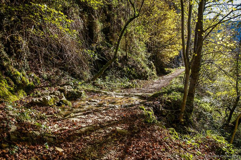 Por la fuente del camino del Lago Lareo