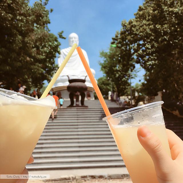 芽莊自由行︱世界大佛收集趣.龍山寺Chùa Long Sơn來去與芽莊大佛喝甘蔗汁吧
