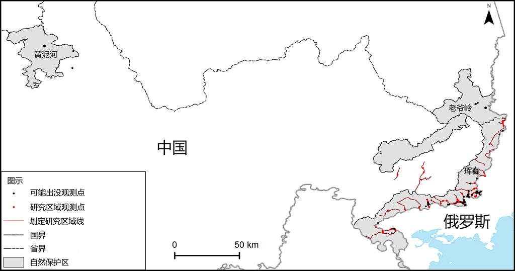 中國琿春、汪清、老爺嶺三個自然保護區中2013到2015年北京師範大學虎豹研究團隊採集東北虎糞便的地點示意圖。來源:竇海龍等,2016,PLOS One。