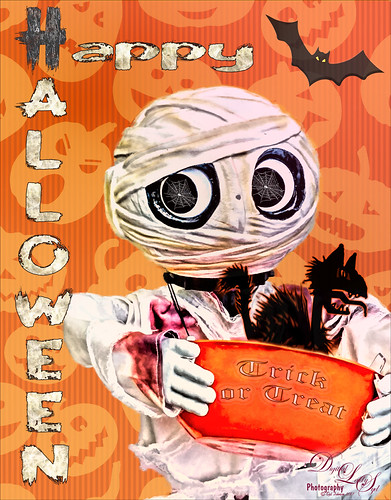 Trick or Treat Halloween Greeting
