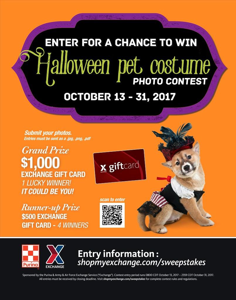 halloween pet costume contest | from oct. 13 to 31, exchange… | flickr