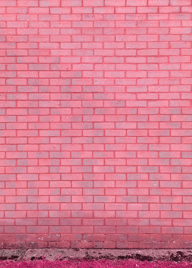 pink toned brick wall