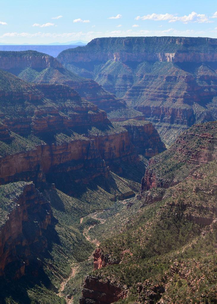 Fotografía vertical del Gran Cañón del Colorado con vegetación