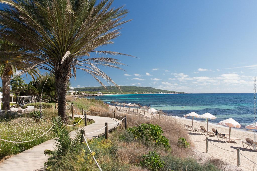 Пальма, помост и пляж на Форментере