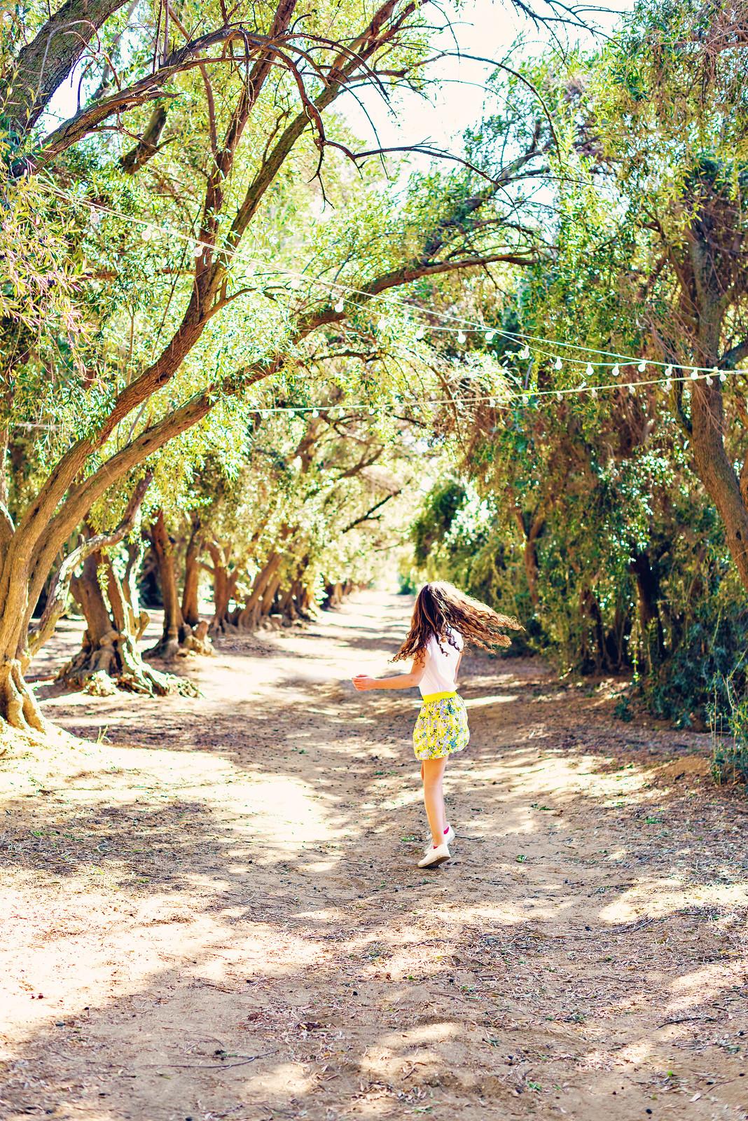 olive festival highland springs resort