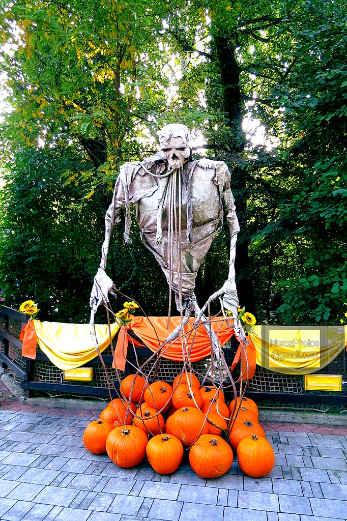 Halloween A Gardaland.Halloween In Gardaland 2016 01 I Was Very Lucky To Be Th Flickr
