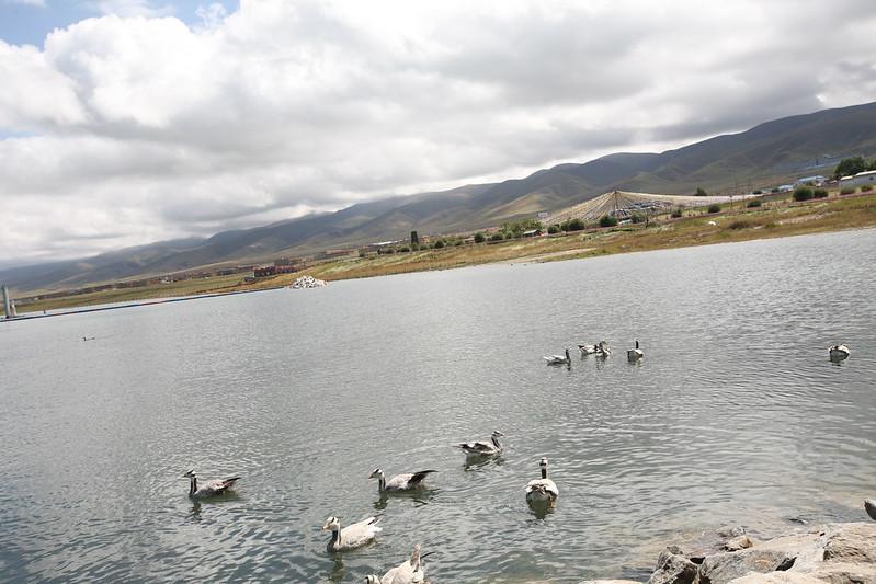 青海湖,圖片來源:kklkong (CC BY-NC-ND 2.0)。