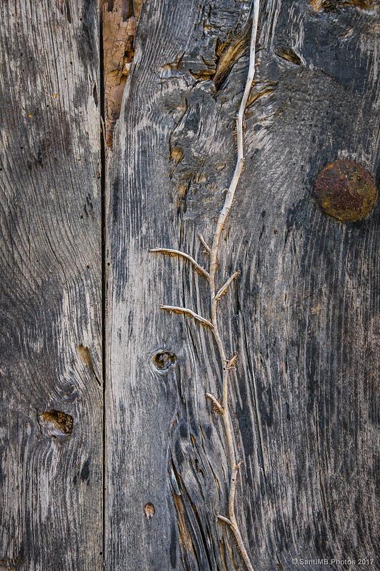 Detalle en una puerta de la Casa 2 en Marmellar