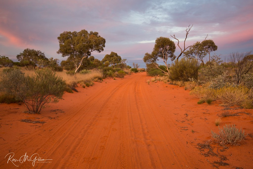 A road less travelled from the great victoria desert wa for Picture great