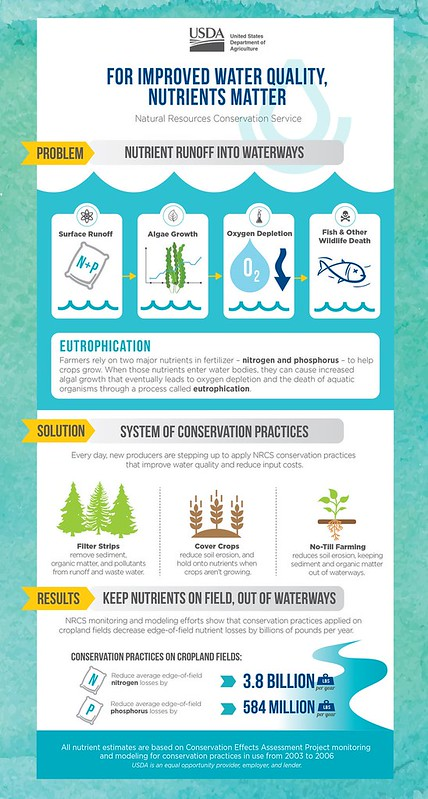 For Improved Water Quality, Nutrients Matter infographic
