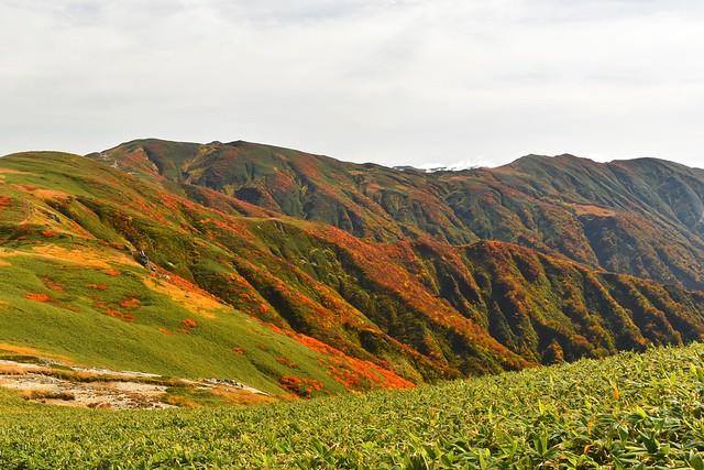 朝日連峰の紅葉風景