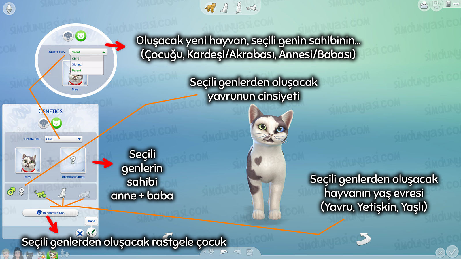 The Sims 4: Cats & Dogs Create a Pet Genetics