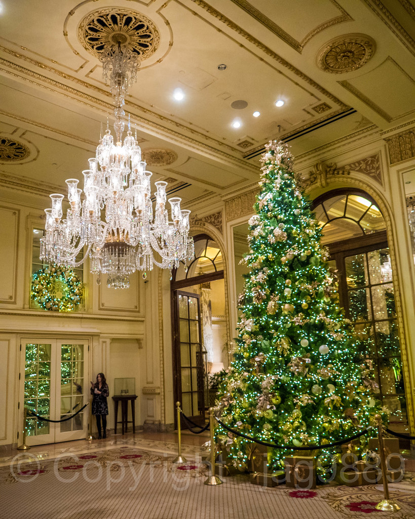 The Plaza Hotel Christmas Tree Midtown Manhattan New Yor