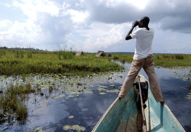 馬本巴沼澤 鳥觀行程,圖片來源:Uganda Tourism Center