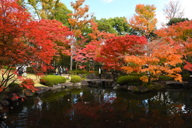 大田黒公園 池の紅葉