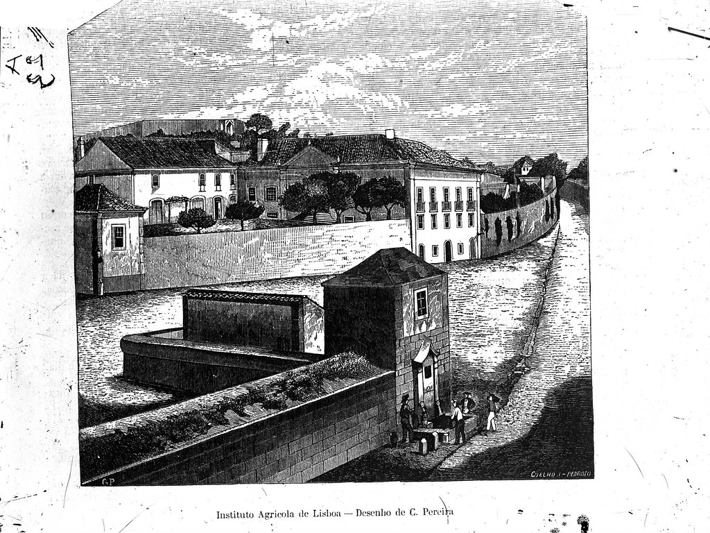Chafariz da Cruz do Taboado, Lisboa (C. Pereira, Archivo Pittoresco, 1862)