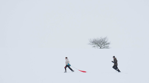 Sledging | by Paul Kaye