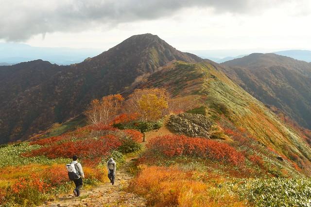 朝日連峰縦走 小朝日岳へ続く紅葉の稜線