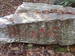 Harambe Rock