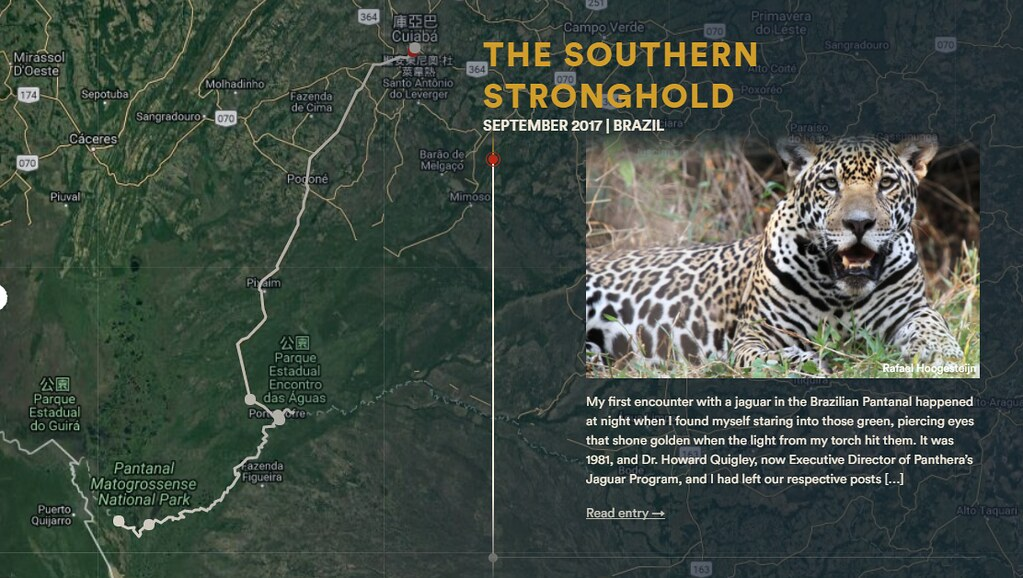 美洲豹旅行。圖片擷取自Journey of the jaguar 計畫網站。