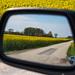 In the rear mirror