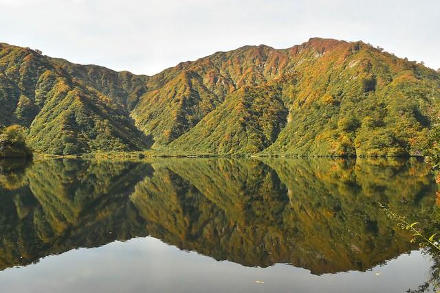 鏡のように風景を映し出す大鳥池