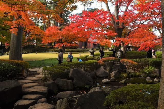 秋の大田黒公園