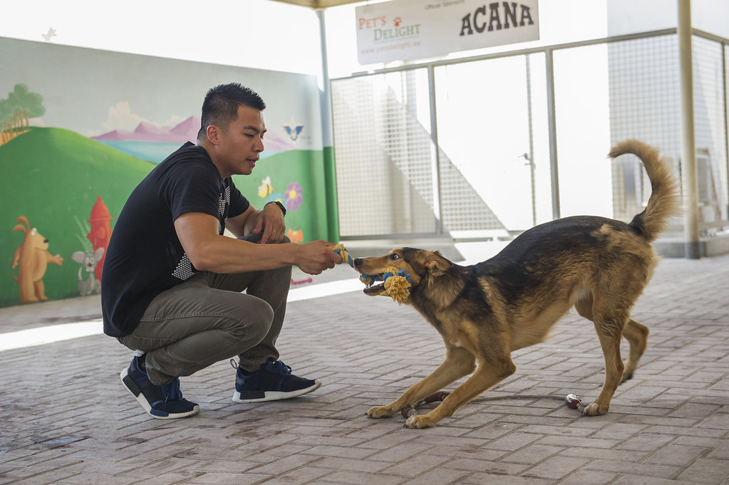 Aviation Boatswain's Mate (Handling) 1st Class Enrico Rabina, assigned to the amphibious assault ship USS America (LHA 6) plays with a dog at the K9 Animal Friends Dog Shelter during a community service project.