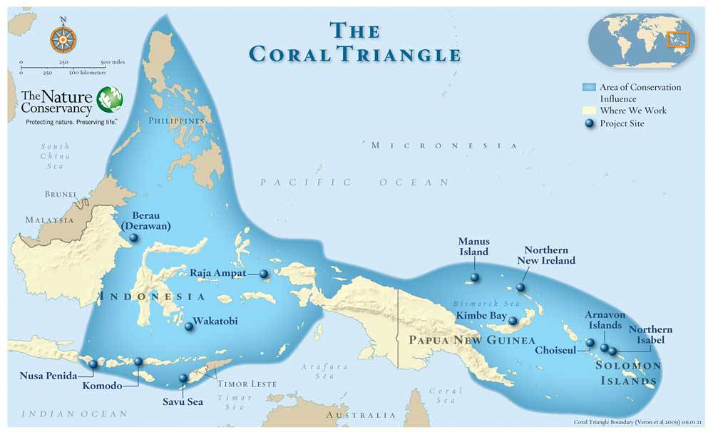 Mapa triángulo del coral
