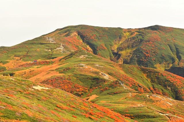朝日連峰・中先峰から寒江山の展望