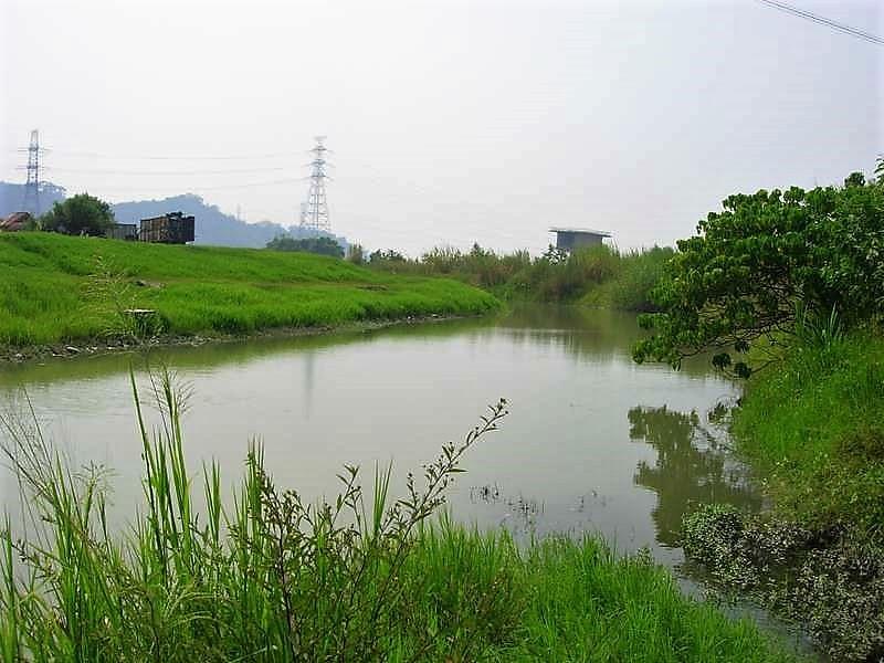 巴氏銀鮈所棲息的烏溪支流水塘,攝於2005年。圖片來源:鍾宸瑞。