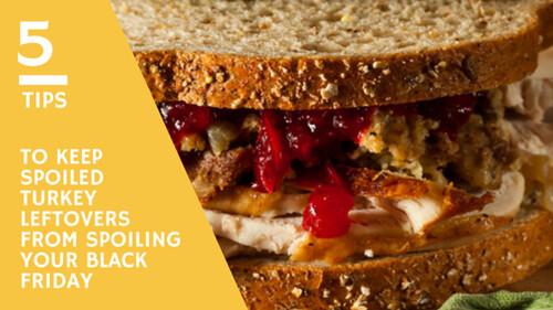A turkey sandwich