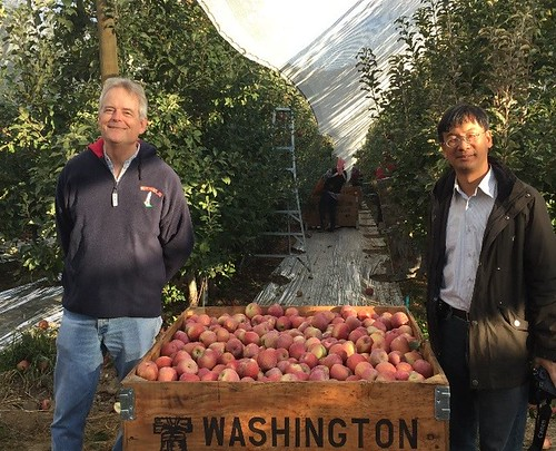 APHIS Foreign Service Officer Russ Caplen with a Taiwan government official inspecting apples