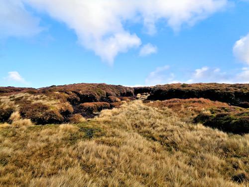 Looking north to Alport Moor