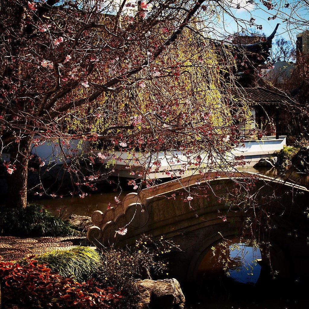 ... Bridge, Dunedin Chinese Garden Dunedin, New Zealand #architecture  #decor #design #