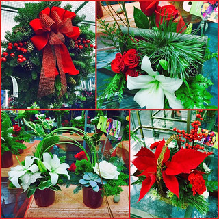 Festive Flowers and Plants — Photo Courtesy Brian Wheat, AAF, PFCI, of Lafayette Florist, Gift Shop & Garden Center in Lafayette, Colorado. www.lafayetteflorist.com | by Flower Factor