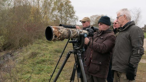 flickr Kraanvogels fotograferen vergt...