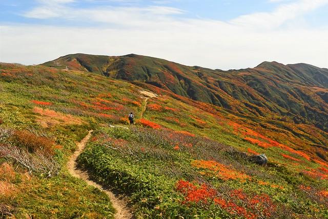 朝日連峰 紅葉の縦走路