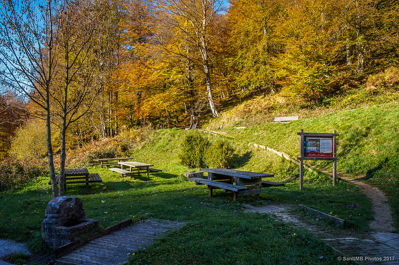 Área de picnic del Parketxe de Lizarrusti