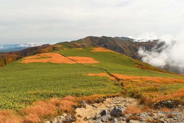 以東岳~朝日岳縦走 稜線の草原地帯